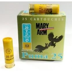 Puma 25  Mary Arm